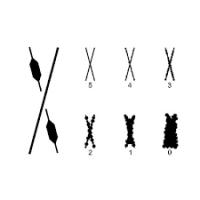 Адгезиметр-решетка Константа АХ