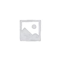 Опциональный модуль Вluetooth для блока анализатора testo 350 (01)